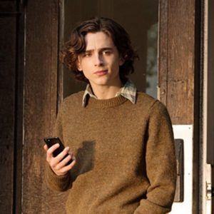 Timothée Chalamet A Rainy Day In New York Sweater Gatsby Brown Sweater
